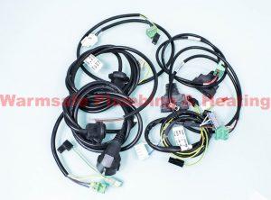 Remeha Avanta 720543801 cable set