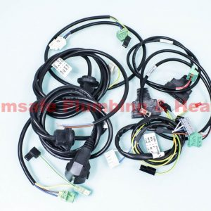 Remeha Avanta 720543801 cable set