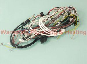 Glowworm 0020061650 Harness